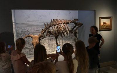 ROMU ÅBNER MUSEER FOR UNDERVISNING FOR DE YNGSTE ELEVER